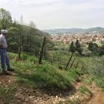 Vista su Monticelli - Foina